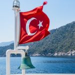 Turkey and Vietnam mini importation